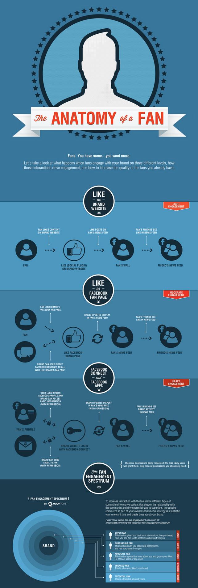 """Facebook Infografik – """"The Anatomy of a Fan"""""""