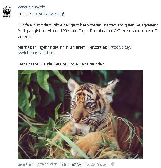 WWF Weltkatzentag