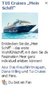 Einsatz von Facebook Fanpages und Ads im Reisevertrieb