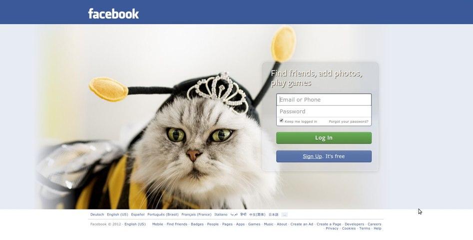 Neue Facebook Startseite im Test! Mit Katzenbildern!