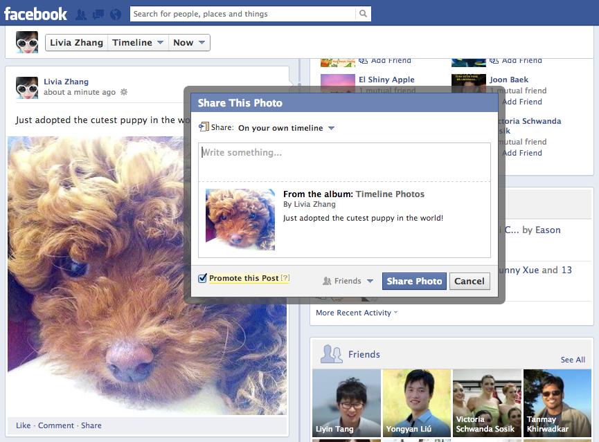 Neues Feature: Über Promoted Posts können nun auch die Posts von Freunden beworben werden.