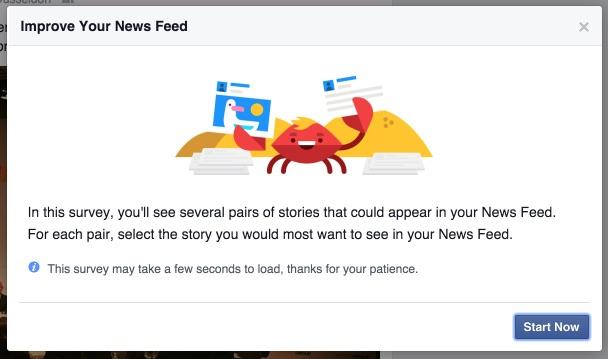 Facebook-Umfrage zum Newsfeed