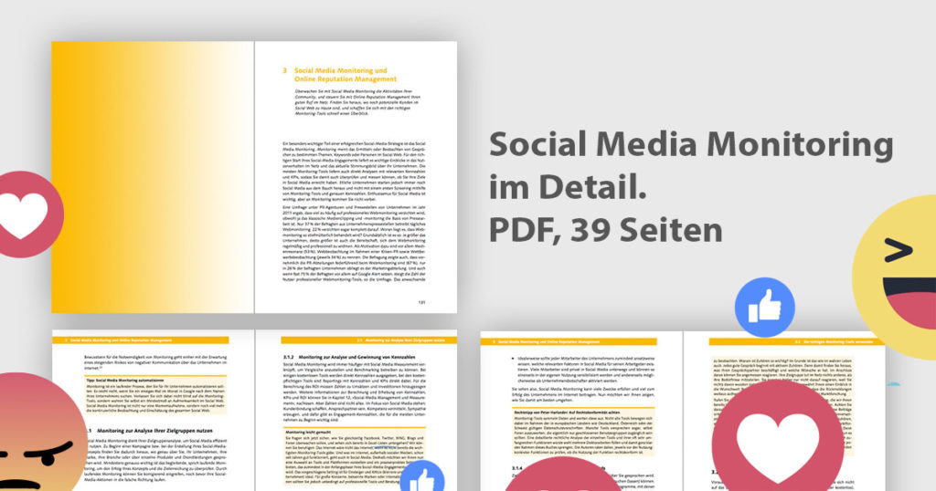 Download: Social Media Monitoring und Online Reputation Management auf 39 Seiten im Detail